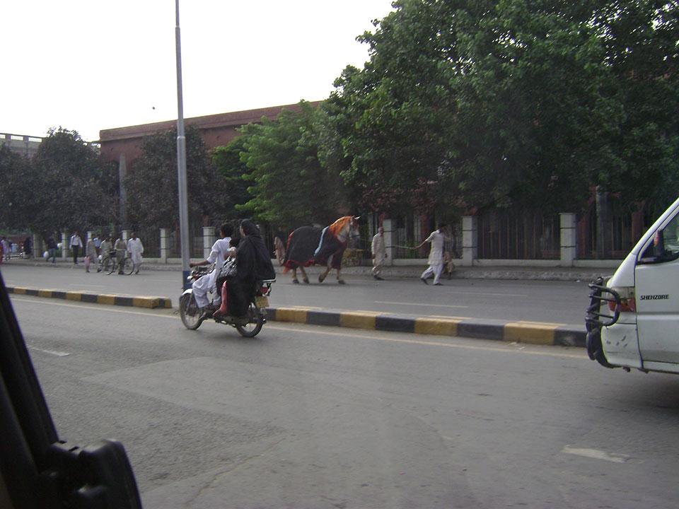 pakistan-4